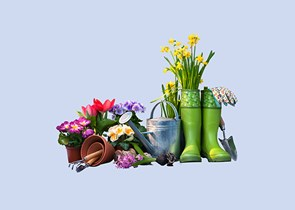 Plants, green wellies and gardening tools on a blue background