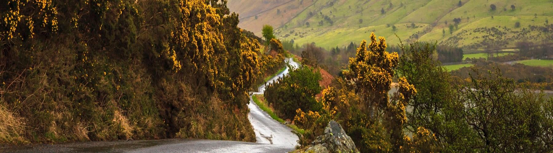 Narrow winding road through green hills