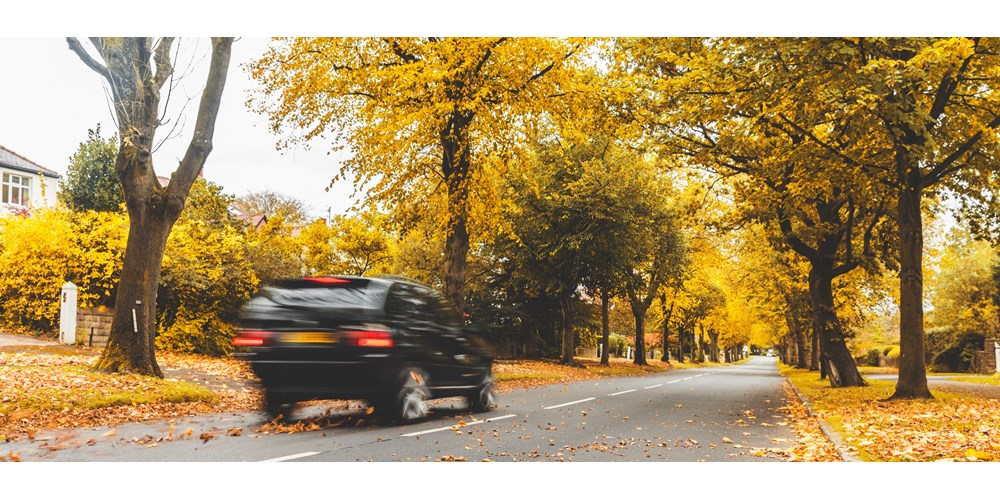 Black car driving in autumn
